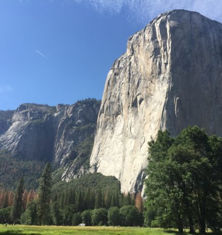 The Natural Beauty of Yosemite